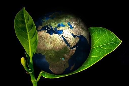 Renewable Carbon Initiative, RCI, Instituto Nova