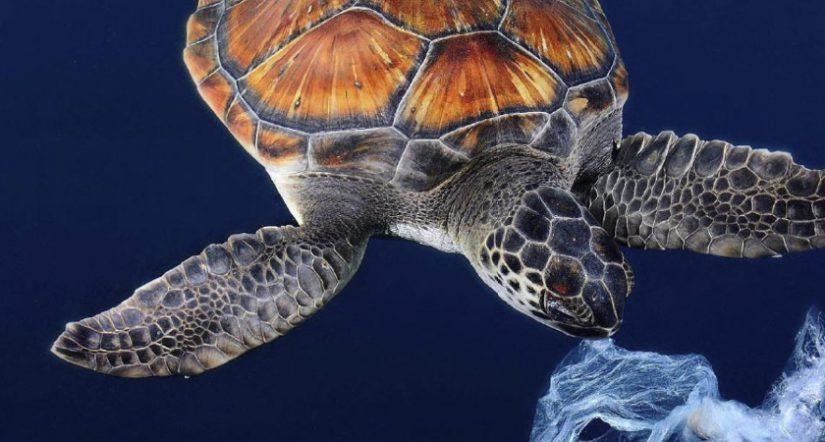 Seaqual, Première Vision, plástico marino, sostenibilidad textil