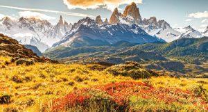 Patagonia, chalecos, chalecos corporativos, sostenibilidad, B Corp, firma estadounidense, Wall Street , Silicon Valley