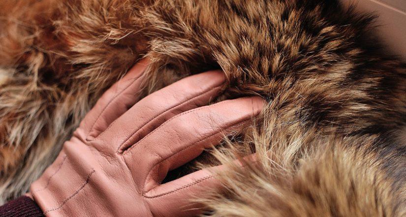 Spanish Fur Association, SFA, piel sintética,  pieles animales, reina británica ,Isabel II, PETA, Personas por el Trato Ético de los Animales, Asociación Española de Peletería,