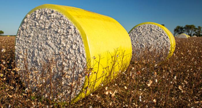 U.S. Cotton Trust Protocol, algodón, sostenible